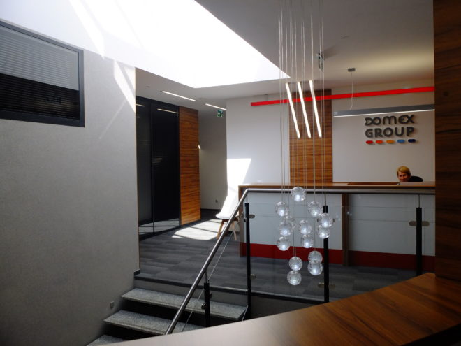 Domex Group